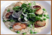 restaurant food risotto